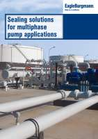 Brochure Sealing solutions for multiphase pump applications